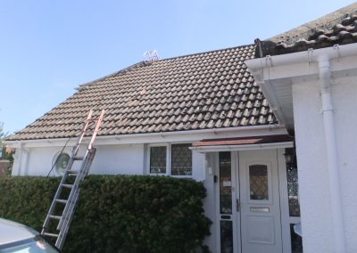 ken-moss-roof-coating-013